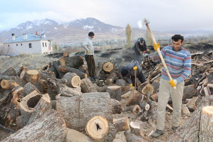 3 kardeş 50 TL karşılığında yaz kış demeden odun kırıyor