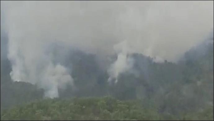 Antalya'daki orman yangını kontrol altında