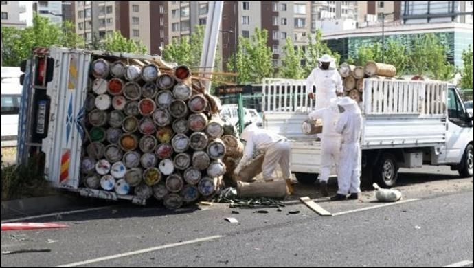 Arı kovanı yüklü kamyonet devrildi