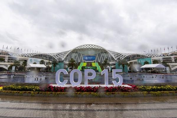 Biyolojik Çeşitlilik Konferansı, bugün Çin'de başlıyor