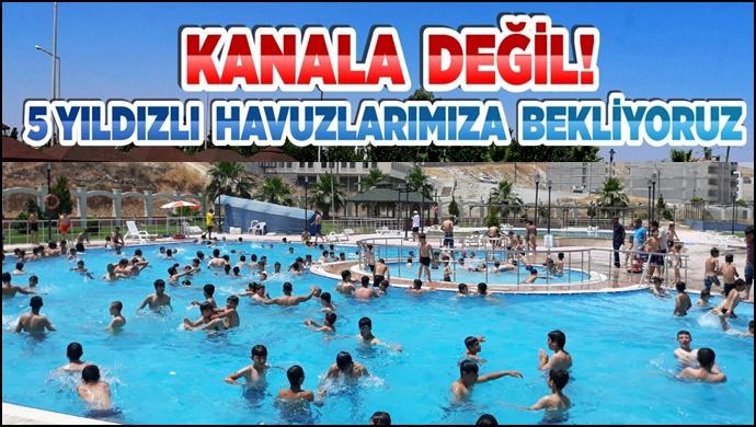 Büyükşehir'deki yüzme havuzları 15 bin kişiye hizmet veriyor