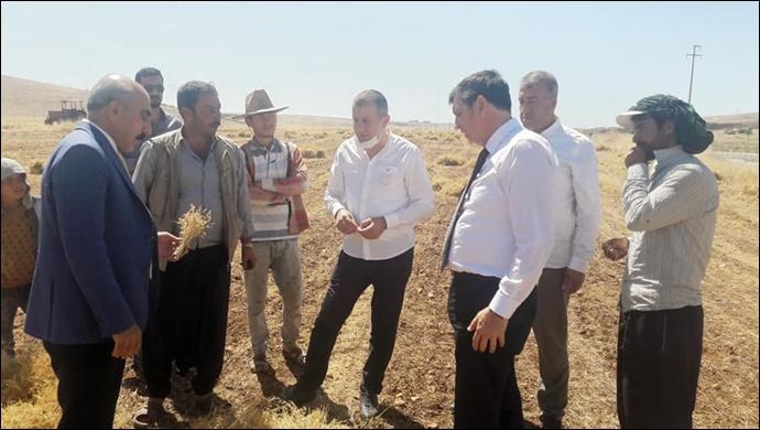 CHP Heyeti Tarlada Hilvan Çiftçisini Dinledi