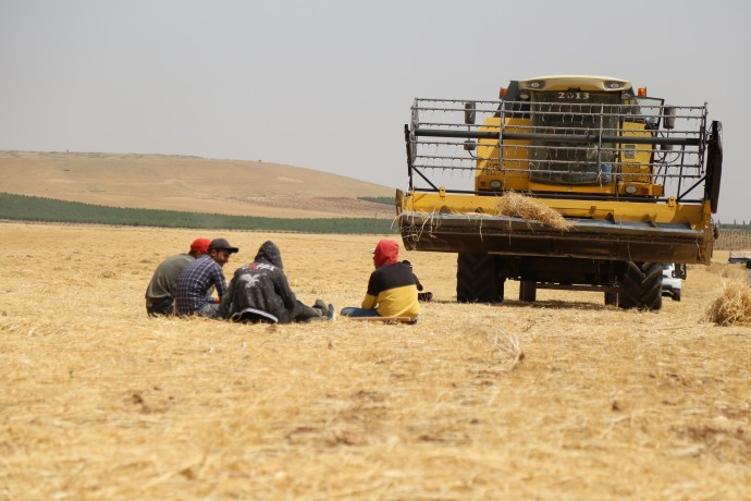 Çiftçilere tek yol 'mevsimlik göç' bırakılıyor