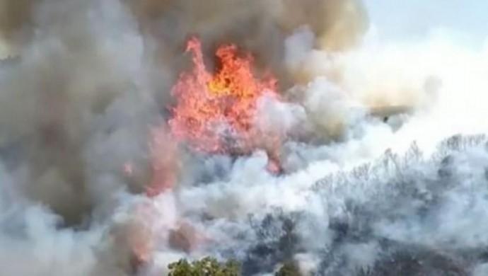 Ege bölgesinde 4 ilde daha yangın