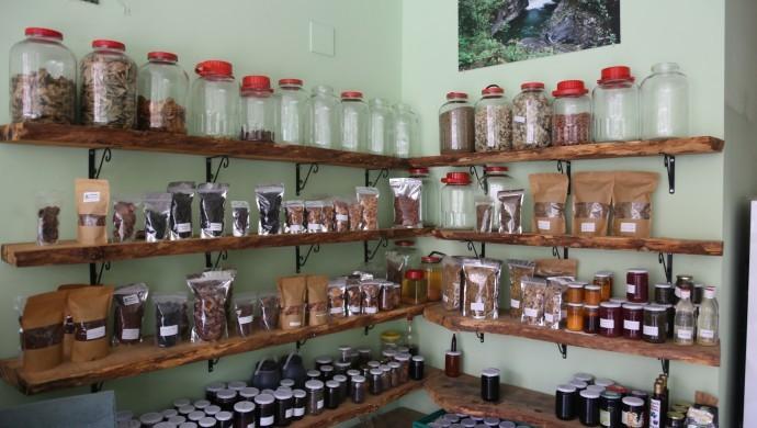 Fındıklı'da organik tarım seferberliği
