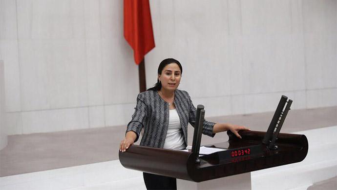 Harran Üniversitesi meclis gündemine taşındı!