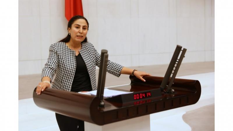 HDP'li Vekil Şanlıurfa'daki Çocuk Nöroloji Doktoru Eksikliğini Meclise Taşıdı
