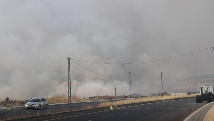Kayapınar'da bin dönümlük arazide yangın