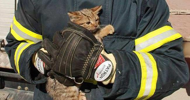 Köprünün Korkuluklarına Sıkışan Kedi Kurtarıldı
