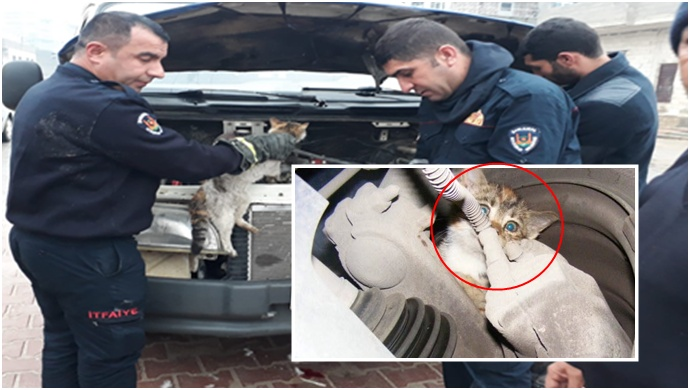 Motorda sıkışan kedinin imdadına itfaiye yetişti