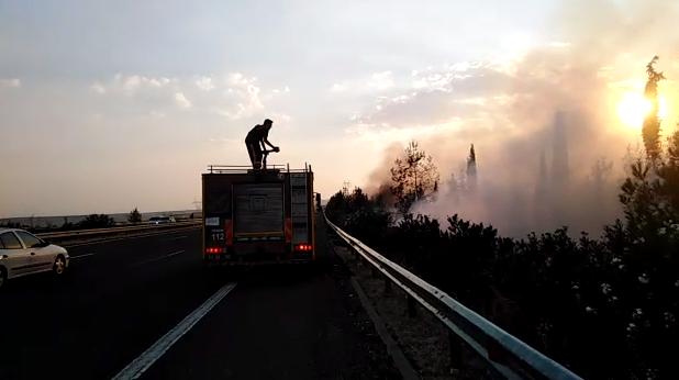 Şanlıurfa'da  ormanlık alanda yangın! Facia son anda önlendi-(VİDEO)