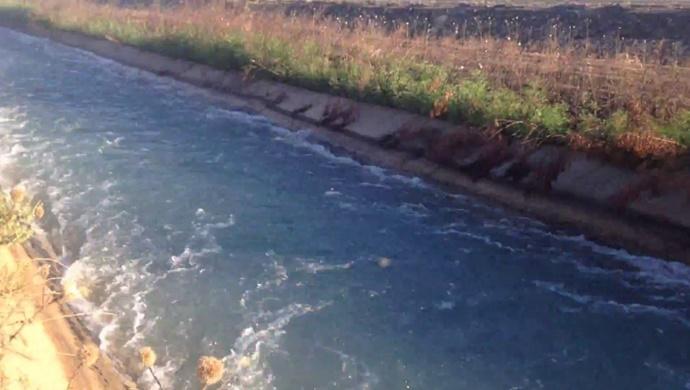 Şanlıurfa'da tahliye kanalında jeneratörle balık avladılar! 18 bin lira ceza uygulandı