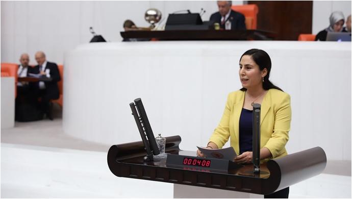 Şanlıurfa'nın DEDAŞ Sorunu Meclis Gündeminde!