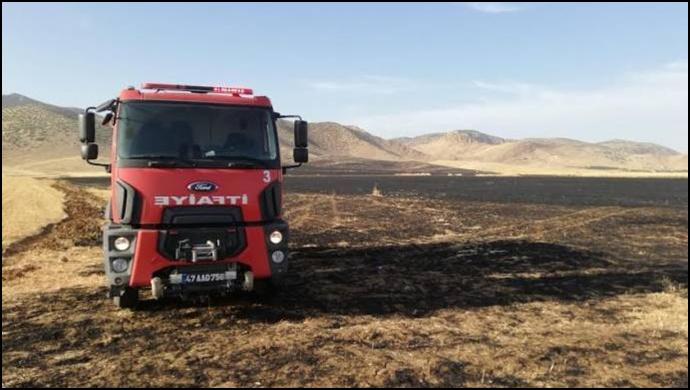 Savur'da 3 bin 400 dönüm ekili arazi kül oldu