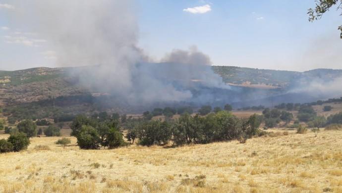 Silvan'da orman yangını