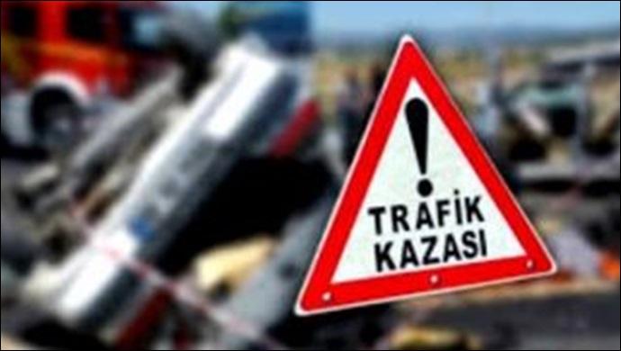 Siverek'te kamyonetler çarpıştı: 3 kişi yaralandı, 5 koyun telef oldu!