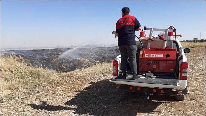Suruç'ta otluk alanda yangın: İtfaiye müdahale etti
