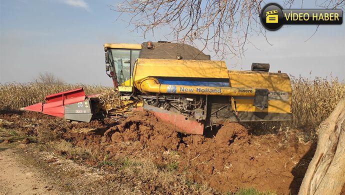 Suruç'ta yeraltı suyu yükselince çiftçi ekinini biçemedi! DSİ'ye dava açıyorlar