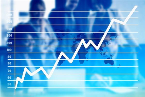"""TCMB Ekonomist Toplantısı: """"Politika dezenflasyon için yeterince sıkı"""" vurgusu"""