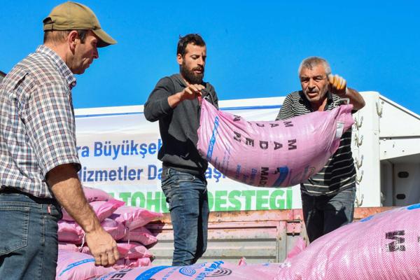 Türkiye'nin bu yılki en büyük arpa ve buğday tohumu desteği başladı