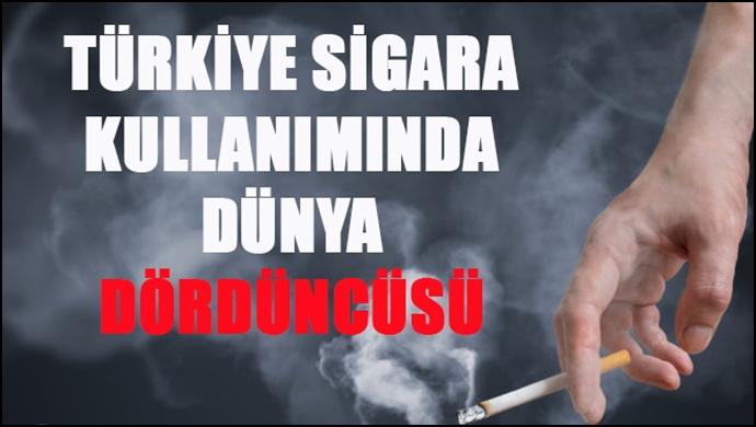 Türkiye Sigara Kullanımında Dünya Dördüncüsü