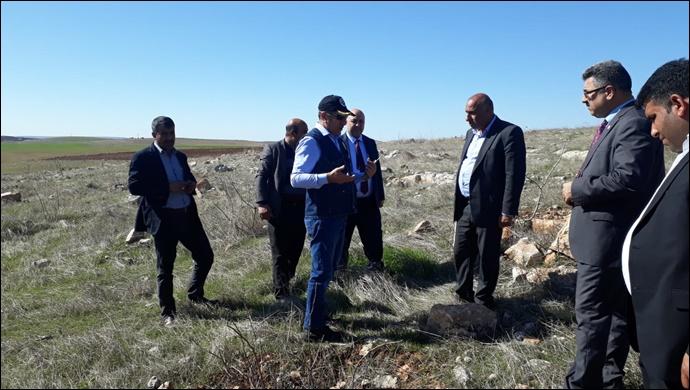 Urfa'da Ağaçlandırma Çalışmaları Devam Ediyor