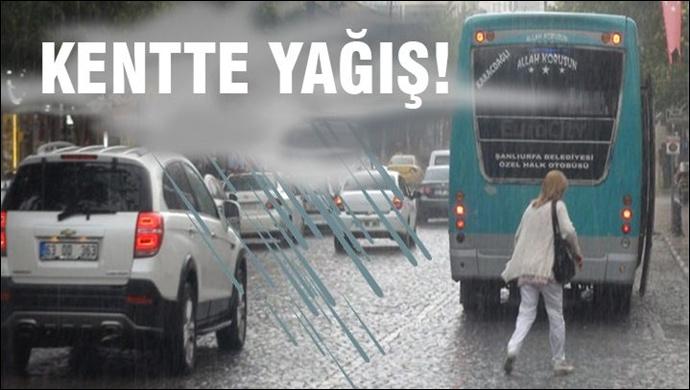 Yağmur ve Sis Urfa'da Etkisini Sürdürüyor